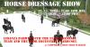 dressage show campbell coast 12.11.2020_k.png