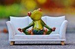 Frosch2.jpg